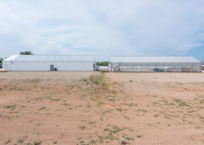 N Property Line at Stepdown Between Greenhouses - Looking S to Expansion Property Pads 2